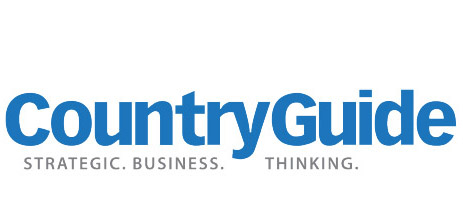 CountryGuide - Strategic Business Thinking logo
