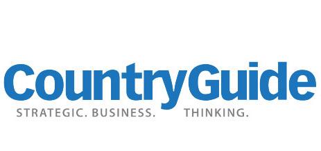 CountryGuide - Strategic Business Thinking logo