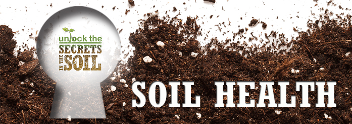 Unlock the secrets in the soil - Soil Health.