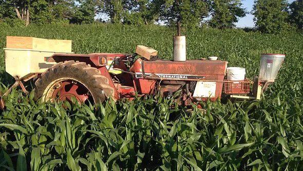 Tyler Papple Farm